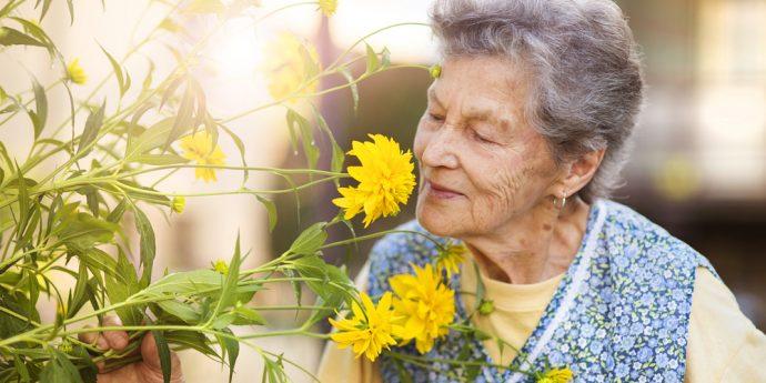 Uma senhora de idade aprecia uma linda flor amarela